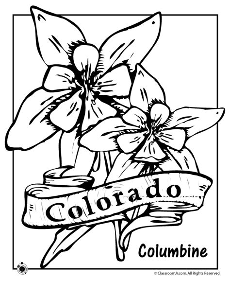 state flower coloring pages colorado state flower coloring