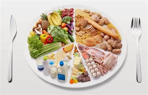 protein recommendations protein diet protein diet recommendations