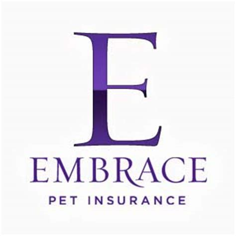 pet insurance for dogs 3 providers of best pet insurance for dogs are they