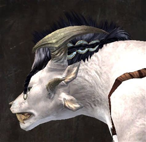 Gw2 Hair Style Kit by Gw2 Entanglement New Hairstyles In Makeover Kit Dulfy