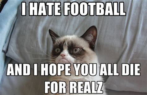 i hate football cat meme cat planet cat planet