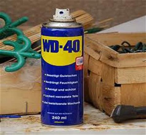 spray to keep dogs from pooping in house 1000 ideas about wasp nest on pinterest insects bugs and nests