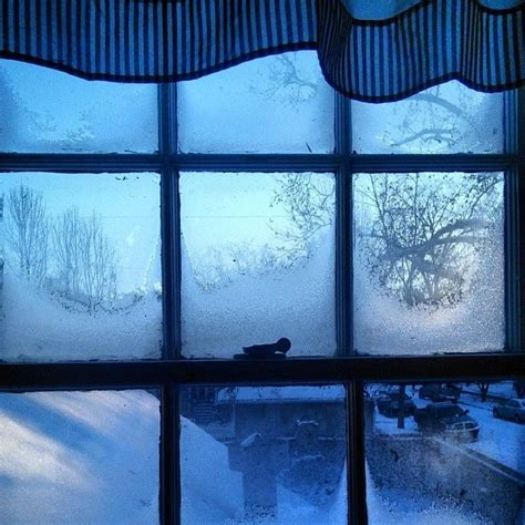 frosted window view  idaho pictures   images