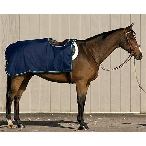 exercise rug exercise rug rugs ideas