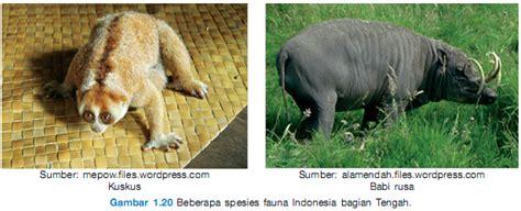 download film dokumenter flora dan fauna ips spensa manado share the knownledge