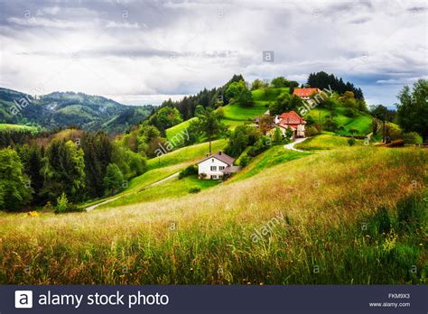 landscape with houses beautiful hill landscape with houses and fir trees springtime in stock photo royalty