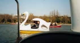 swan boats near turtle back zoo new page 2 www nigels