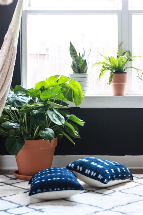 is comfortness a word 100 indoor plant for living room the easiest indoor