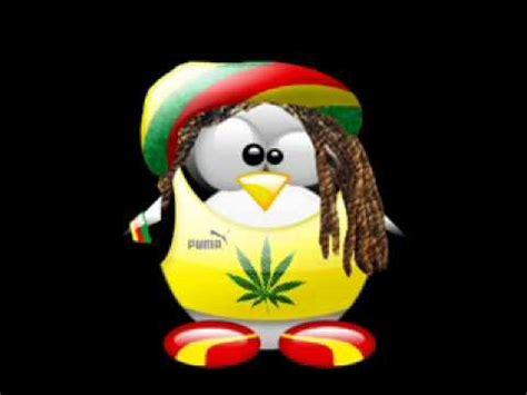 imagenes chidas de reggae canciones de reggae para bailar youtube