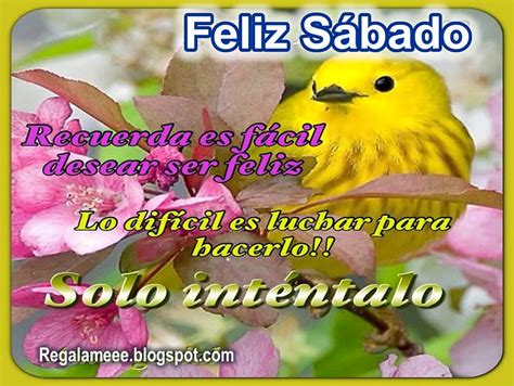 imagenes lindas de feliz sabado mi amor feliz sabado tarjetas postales mensajes y frases gratis