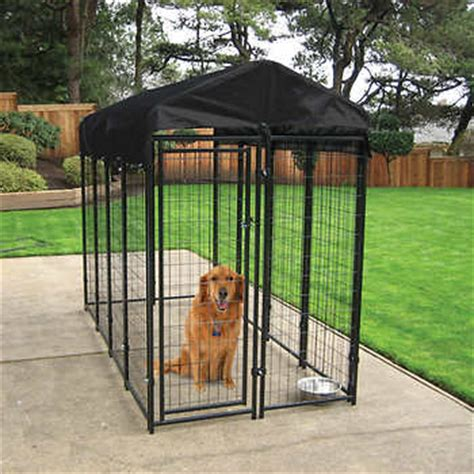 backyard breeders aspca lucky dog uptown welded wire box kennel 6 ft h x 8 ft l
