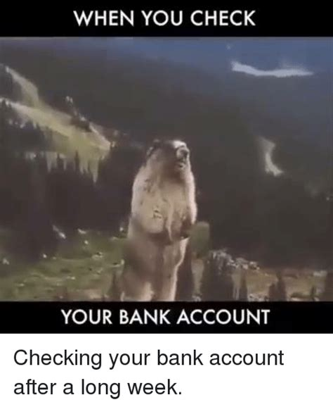 your bank account 25 best memes about when you check your bank account