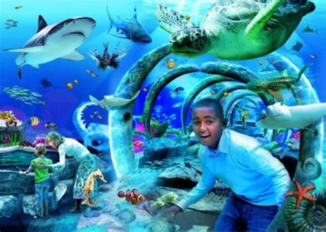 Map Of The World Wall Mural sea life london aquarium connect and do