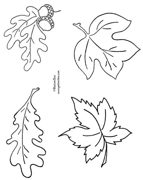 oak leaf template 25 best ideas about oak leaves on oak tree