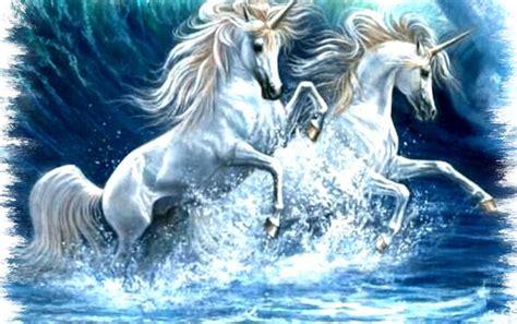 imagenes de unicornios con mujeres wallpapere unicorni unicorni wallpapers