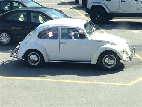 Volkswagen Insurance by 67 Volkswagen Beetle Insurance Coverage 1967 Vw Beetle
