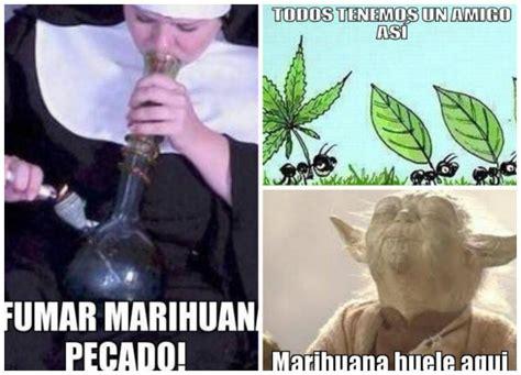 Memes De Marihuanos - aqu 237 los memes por la resoluci 243 n de la scjn sobre la