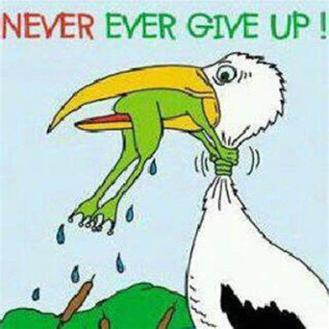 never give up never give up inspirational quotes quotesgram