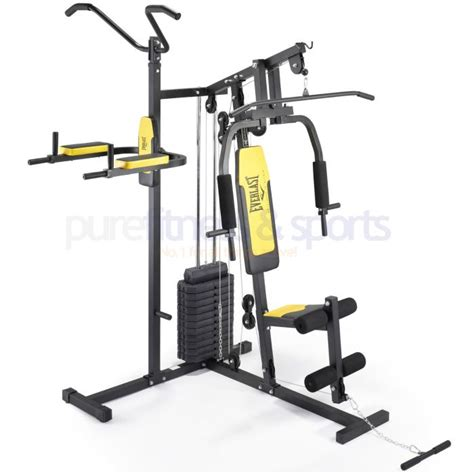 everlast home with pull up and dip station 75kg