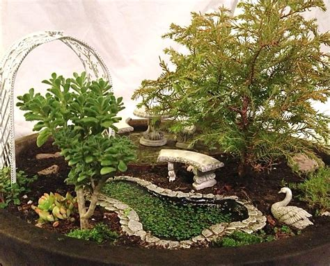 results are in the annual miniature garden contest 2012