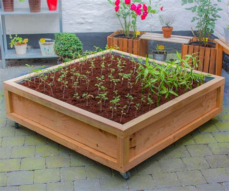 square vegetable garden square meter vegetable garden on wheels