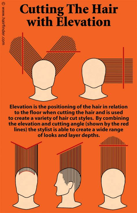 step by step hair cutting instructions step by step instructions for doing a high elevation haircut