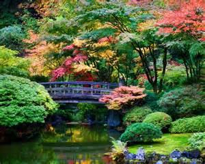 japanese autumn garden by ace flyman dpchallenge