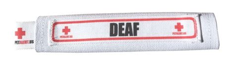 deaf collar 12 best images about groovy pet stuff must haves on models signs and hams