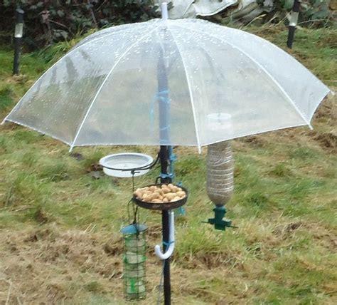 squirrel baffles bird feeders woodworking