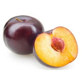 can dogs plums can i give my a plum can pet dogs eat plums or not