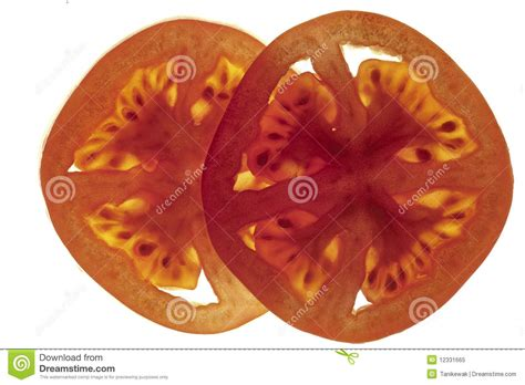 tomato cross section tomato cross sections royalty free stock photo image