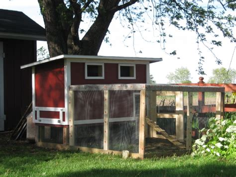 my backyard chicken coop
