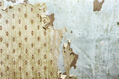 peel off wallpaper peeling wallpaper on drywall stock image image of