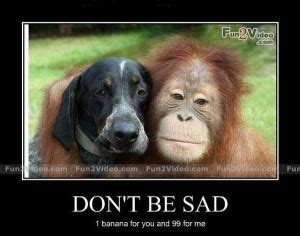 Dont Be Sad Meme - to cheer up a friend funny quotes quotesgram