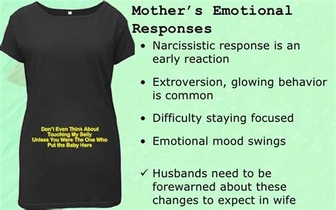 narcissistic mood swings narcissistic mood swings 28 images 1000 images about