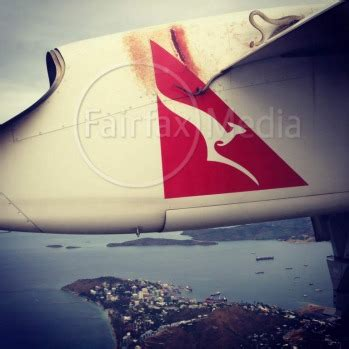 film ular dalam pesawat snake on qantas plane wing photos video qantas