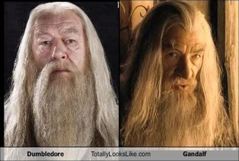 actor gandalf and dumbledore elevensies writemotivation update 187 be positive in life