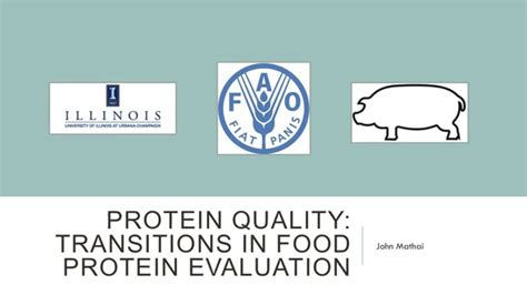 protein quality protein quality transitions in food protein evaluation