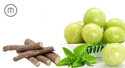 titan gel ayurvedic medicines ayurvedic medicine for