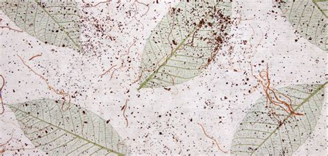 wallpaper unique design unique wallpaper designs