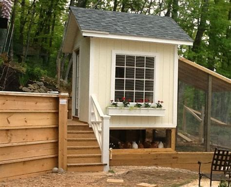 chicken house designs pictures nikki from west virginia s chicken coop pictures one hundred dollars a month