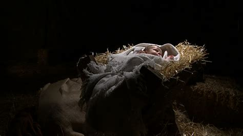 baby jesus manger nativity and b roll footage getty images
