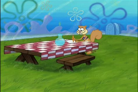 spongebuddy mania spongebob episode flowers  sandy