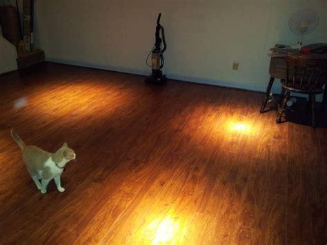 top 28 laminate wood flooring ollies pergo floor houses flooring picture ideas blogule