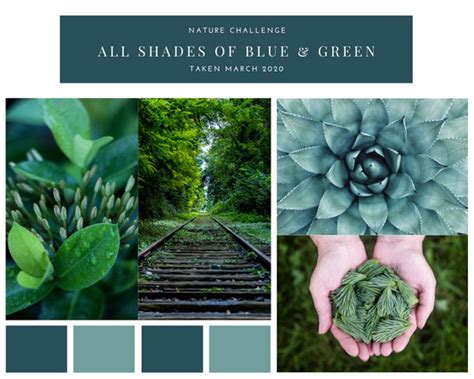 customize  mood boards photo collage templates