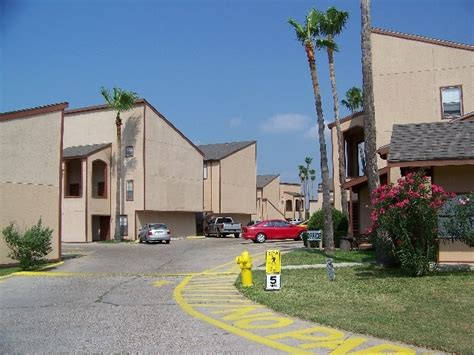 one bedroom apartments in harlingen tx palm terrace apartments rentals harlingen tx