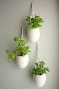 Unique Indoor Planters 4 Unique Garden Indoor Plant Ideas For Your Wedding
