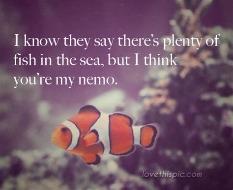 youre  nemo pictures   images  facebook