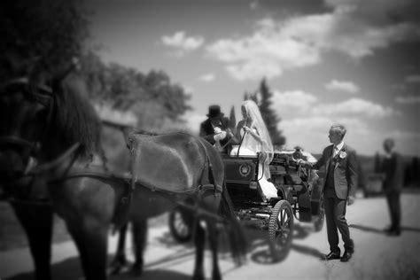 carrozza cavalli carrozza per matrimoni siena toscana