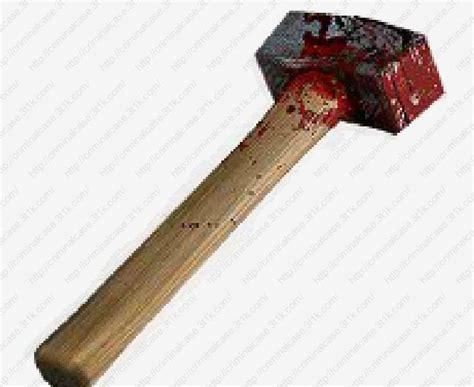 Bloody Hammers killer gets 20yrs sunday news